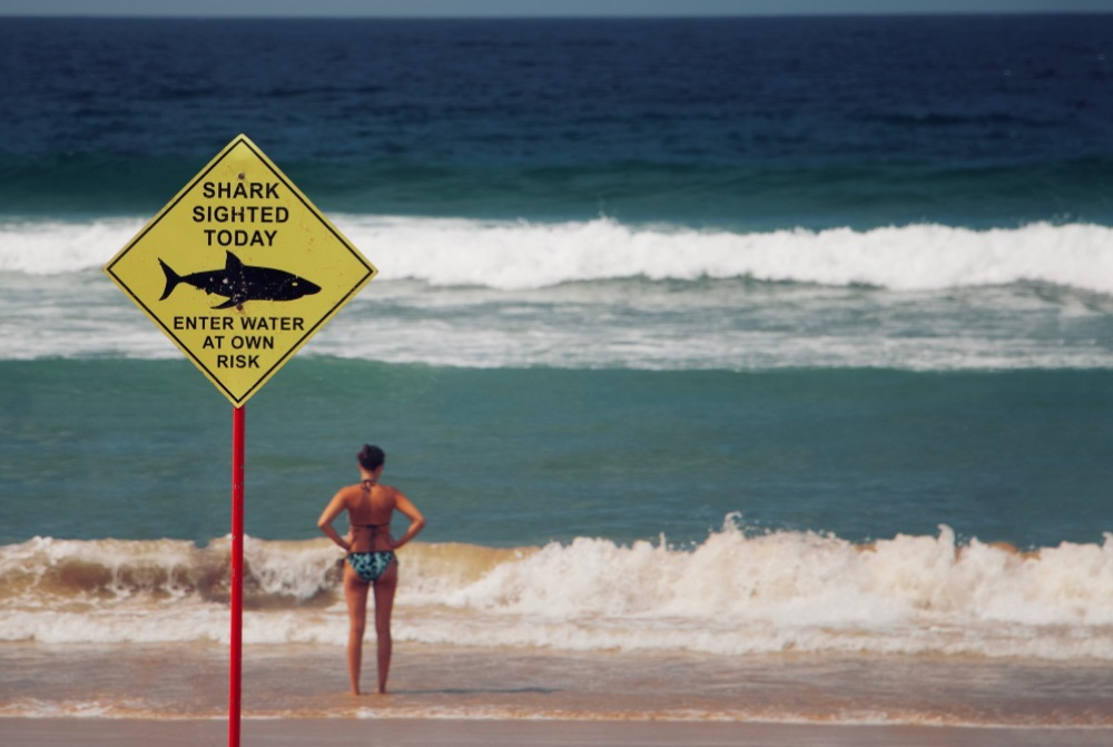 woman-in-beach-with-shark-sign